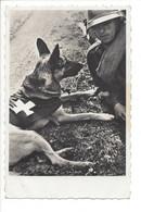 28671 - Société Protectrice Des Animaux La Chaux-de-Fonds Journée Mondiale De Bonté Envers Les Animaux Chien Son Maître - NE Neuchatel