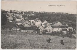 CARTE POSTALE   CERSEUIL 02  Vue Générale - Otros Municipios