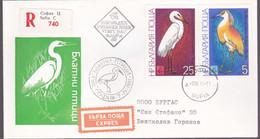 Bulgarije 1981, Registered Letter From Sofia, Birds - FDC