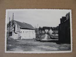 Photo Format Cpsm 1955  La Chapelle En Guinchay ?  La Chasse Veniard  Saône Et Loire 71 Pontanevaux - Other Municipalities