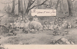 CPA Surréalisme Multi Bébés Bébé Multiple Baby Cochon Porc Pig Champignon Mushroom Fantaisie  2 Scans - Babies