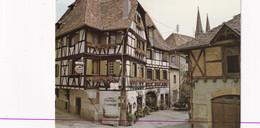 67, Obernai, Vieilles Maisons à Colombages Richement Fleuries - Obernai