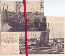 Orig. Knipsel Coupure Tijdschrift Magazine - Hoek Van Holland - Storm , Schade - 1911 - Ohne Zuordnung