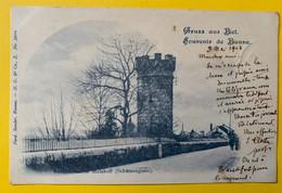 15396 - Gruss Aus Biel Souvenir De Bienne Aussichtsthurm Malakoff 1902 - BE Berne
