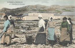 France - Saint-Pierre Et Miquelon - St.-Pierre - Gravières St.-Pierraises - Couleurs - Saint-Pierre-et-Miquelon