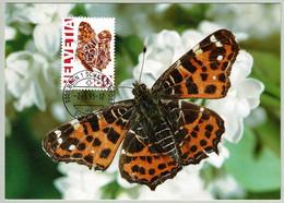 Schweiz / Helvetia 1995, Maximumkarte Landkärtchen / Araschnia Levana, Schmetterling / Butterfly - Butterflies
