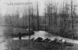 CHATEAUNEUF - Vallée De La Charente - Les Illes - Bergère Et Ses Moutons - Chateauneuf Sur Charente