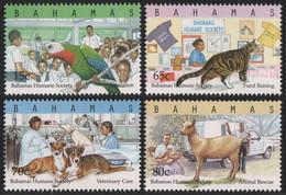 Bahamas 2000 - Mi-Nr. 1059-1062 ** - MNH - Tierschutz - Bahama's (1973-...)
