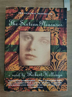 The Sixteen Pleasures - R. Hellenga - Delta Editore - 1995 - AR - Other