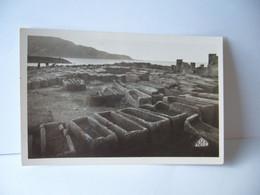 AFRICA AFRIQUE TIPASA ALGERIA ALGERIE SARCOPHAGES DE SAINTE SALSA   CPSM FORMAT CPA 1956 - Andere Steden