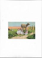 Carte Postale Ancienne Bébés Avec Animaux (brebis) - Babies