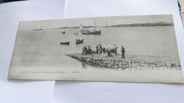 Cpa  Du 50 Chausey Débarquement Des Passagers Venant De Granville -- Carte Double Panorama --  Vue Panoramique  -- Lio - Granville