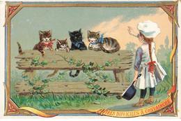 CHROMO MAIRE CHAUSSURES #25776 RUE DU BAC PARIS CHATS CHAT CAT MARMITON TRES DIFFICILES A CONVAINCRE - Andere