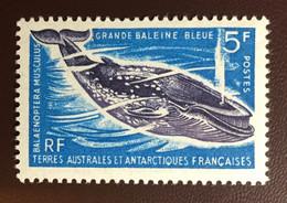 French Antarctic Territory TAAF 1966 Blue Whale MNH - Balene