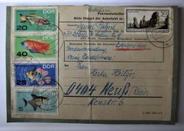 ALLEMAGNE - REPUBLIQUE DEMOCRATIQUE - FDC - Timbres Sur Enveloppe - 1969 - FDC: Ersttagsblätter