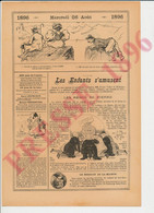 4 Vues Humour Pierre Veber Les Rébus De Pierre évocation Létourneau Carnac Epigraphie + Merle Cage Oiseau   237/34 - Ohne Zuordnung