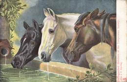 R612215 Distinguished Members Of The Temperance Society. Tuck. Art Series No. 6058. J. F. Herring - Monde