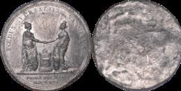 France - Médaille En Plomb Uniface - Versailles - L172 - Royal / Of Nobility
