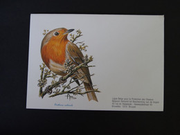 Buzin 2223 Roodborstje Enveloppe Blanco - 1985-.. Birds (Buzin)