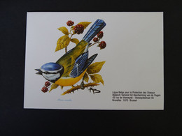 Buzin 2261 Pimpelmees Enveloppe Blanco - 1985-.. Birds (Buzin)