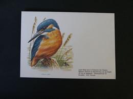 Buzin 2240 Ijsvogel Enveloppe Blanco - 1985-.. Birds (Buzin)