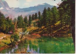 Aosta Valtournanche Cervinia Breuil Lago Bleu Fg - Other Cities