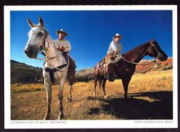 AK 001174 USA - Wyoming - Cowboys Bei Dubois - Other