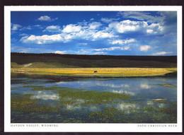 AK 001175 USA - Wyoming - Hayden Valley - Other