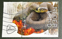Nederland - NVPH - Xxxx - 2021 - Gebruikt - Cancelled - Beleef De Natuur - Ringslang - Tab Links En Boven - Used Stamps