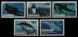 Ghana 1983 - Mi-Nr. 977-981 ** - MNH - Wale / Whale - Ghana (1957-...)
