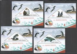 JA045 2019 PENGUINS MANCHOTS BIRDS CHARLES DARWIN PUBLICATION 4BL MNH - Penguins