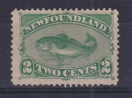 Newfoundland: 1880/82   Atlantic Cod   SG46   2c  Yellow-green    MH - 1865-1902