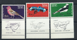 Israël PA N°28/30** (MNH) 1963 - Oiseaux - Airmail