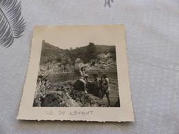 25-9 , 113, Photo , Île Du Levant, La Plage Naturiste, Baigneurs, Juillet 1949 - Luoghi