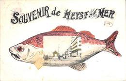 Heist - Heyst - Souvenir De (poisson 1908 Phototypie Marco Marcovici) - Heist
