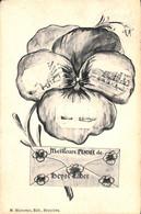 Heist - Heyst - Meilleure Pensée De (1906 Phototypie Marco Marcovici) - Heist