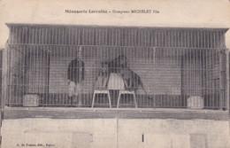 Cpa MENAGERIE LORRAINE DOMPTEUR MICHELET FILS - Zonder Classificatie