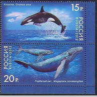 Russia - 2012 - Whale - Yv 7278/79 - Balene