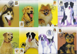 China Taiwan 2006 8 Maximum Card Fauna Animal Mammal Domestic Dog - Gatos Domésticos
