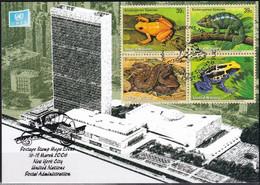 UNO NEW YORK 2006 Mi-Nr. 85 Grüne Karte - Show Card  Mit Erinnerungsstempel New York City - Briefe U. Dokumente