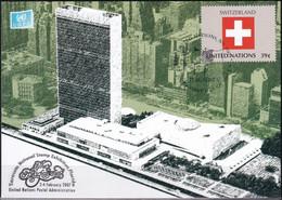 UNO NEW YORK 2007 Mi-Nr. Grüne Karte - Show Card  Mit Erinnerungsstempel Sarasota - Briefe U. Dokumente