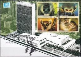 UNO NEW YORK 2007 Mi-Nr. Grüne Karte - Show Card  Mit Erinnerungsstempel New York - Briefe U. Dokumente