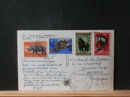 94/947 CP CONGO BELGE  1959 - 1947-60: Lettres