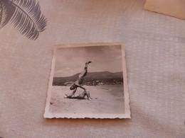 25-9 , 211 , Photo , Le Lavandou, Sur La Plage, Couple Gymnaste  En Maillot De Bain, 1951 - Luoghi