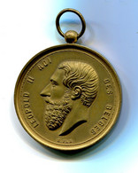 Médaille Léopold II Société Sainte Cécile De Wiers 1878, 46 Mm, 25 éme Anniversaire Et Inauguration Du Drapeau Royal - Other