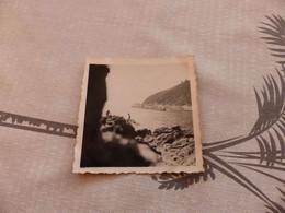 25-9 , 232 , Photo , Île Du Levant,  Naturisme,  Sur Les Rochers, Des Baigneurs, 1951 - Luoghi