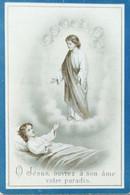 DOODPRENTJE - ELVIRE MARGUERITE MARIE VANYPERZEELE (° RENAIX 1888  /+RENAIX 1902 ) (dp 262 ) - Overlijden
