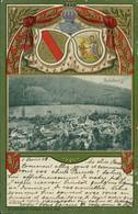 AK Sulzburg Gesamtansicht, Wappen (8-455) - Other