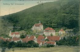 AK Sulzburg Teilansicht Mit Kath. Kirche, Genesungsheim Des XIV. Armee-Korps Und Neues Krankenhaus (8-482) - Other