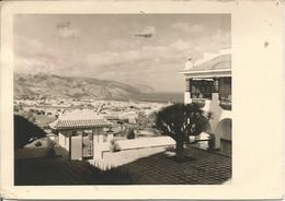 TENERIFE. Panorama De La Ville  (COMPAGNIE MARITIME BELGE SA ANVERS). (scan Verso) - Tenerife